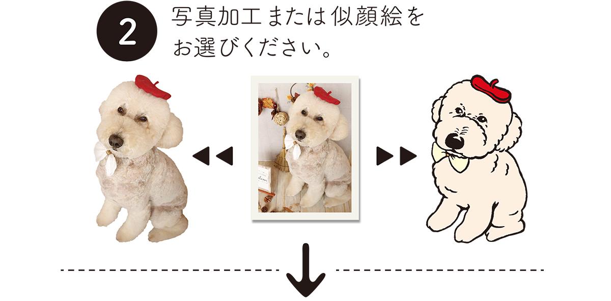 ペットの写真からオリジナルグッズを作成